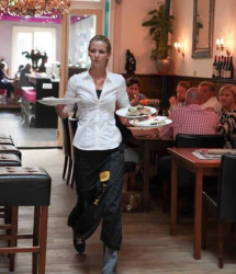Choosing a General Purpose Restaurant Cleaner